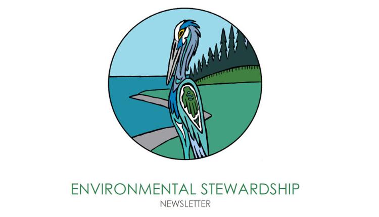 Environmental Stewardship Newsletter