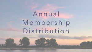 Sunset Photo with text stating: Annual Distribution Information